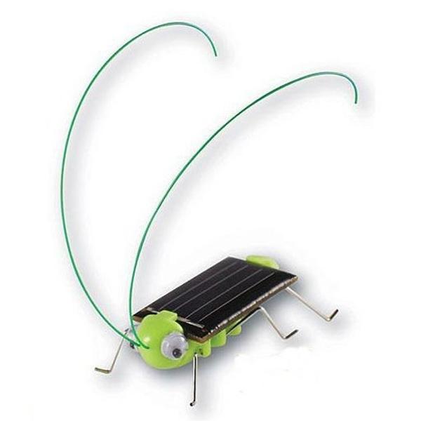 Educational solar powered grasshopper toy gadget alex nld for Grasshopper tattoo supply