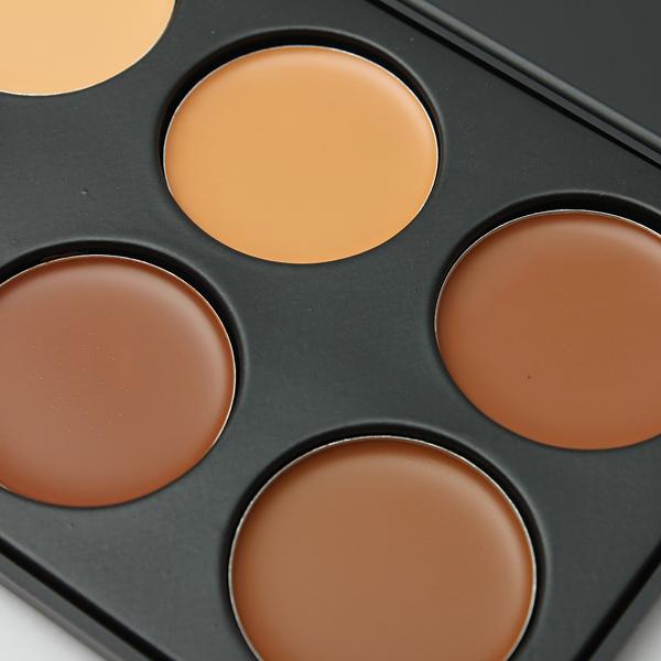 10 Colors Eye Face Concealer Camouflage Makeup Palette Set Alex Nld