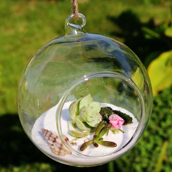 Ball Shape Hanging Glass Vase Succulent Plants Micro Landscape