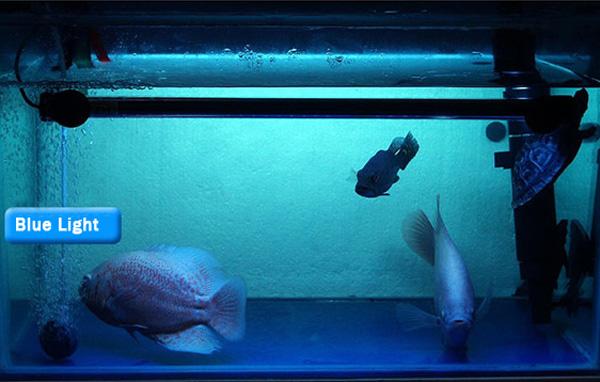 18cm Aquarium Fish Tank Waterproof Led Light Bar Submersible