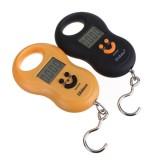 50Kgx5g Hanging Pocket Digital Fishing Weight Luggage Scale