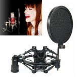 Microphones & Wireless Systems