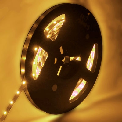 4.8W Warm White Bare Board LED 3528 SMD Rope Light, 60 LED/M, Length: 5M