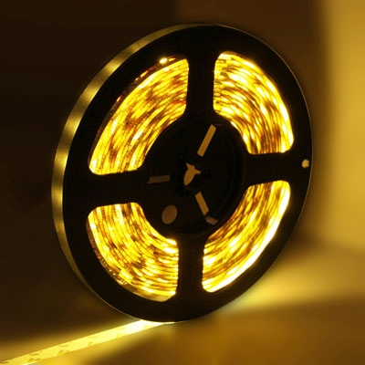 Bare Board Warm White LED 5050 SMD Rope Light, 60 LED/M, Length: 5M