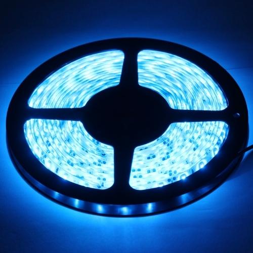 Epoxy Waterproof Blue LED 3528 SMD Rope Light, 60 LED/M, Length: 5M