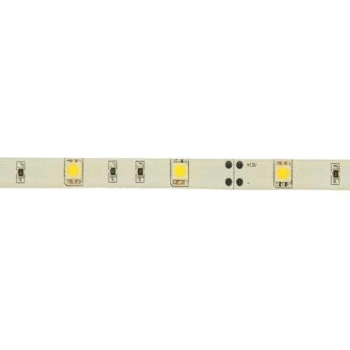 Epoxy Waterproof Warm White LED 5050 SMD Rope Light, 30 LED/M, Length: 5M