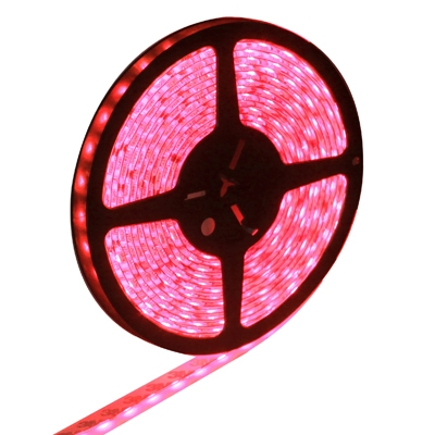 Epoxy Waterproof Red LED 5050 SMD Rope Light, 60 LED/M, Length: 5M