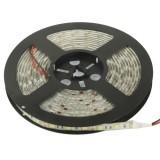 Epoxy Waterproof White LED 5050 SMD Rope Light, 60 LED/M, Length: 5M