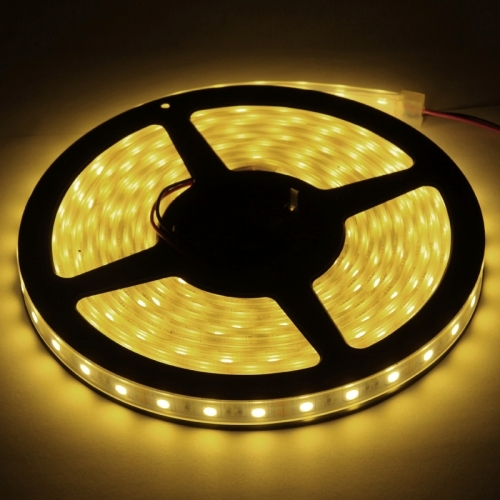 Casing Waterproof Warm White LED 5050 SMD Rope Light, 60 LED/M, Length: 5M