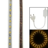 Casing Waterproof Casing Warm White LED Rope Light with Controller, Length: 1M