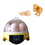 Backyard Poultry Supplies