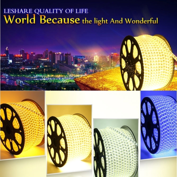 Epoxy Waterproof Warm White Light LED 3528 SMD Rope Light with EU Plug Power Supply, 60 LED/m, Length: 5m