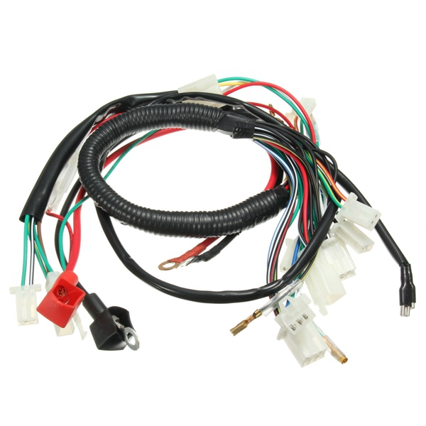 wiring harness loom for chinese electric start quads 50cc 70cc 90cc 110cc 125cc alex nld. Black Bedroom Furniture Sets. Home Design Ideas