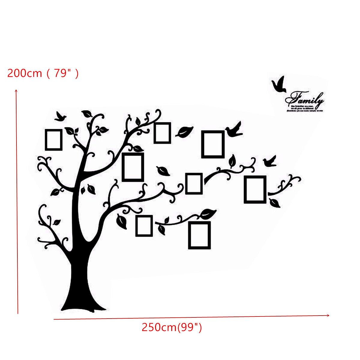 2.5M Removable Memory Tree Picture Frames Wallpaper Photo Wall ...