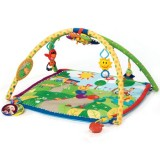 Baby Gyms & Play Mats