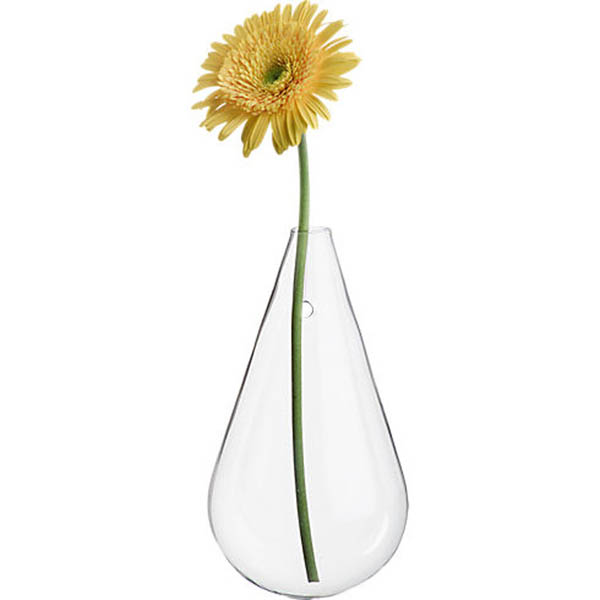 Wall Mounted Water Drop Shape Glass Vase Garden
