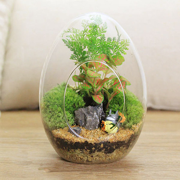 Egg Shaped Diy Moss Micro Landscape Glass Bottle Succulent