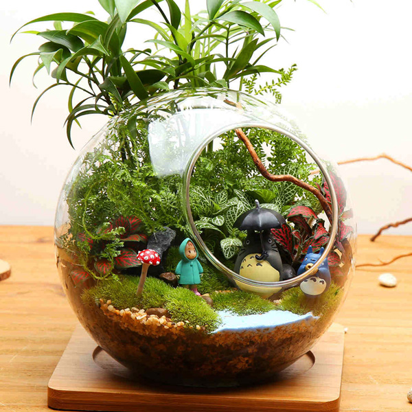 Ball Shaped DIY Moss Micro Landscape Glass Bottle Double