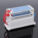 Heavy Duty AC110V 10g 10000Mg/H Ozone Generator With Blue Plates Treatment