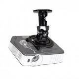 Projector Mounts & Stands
