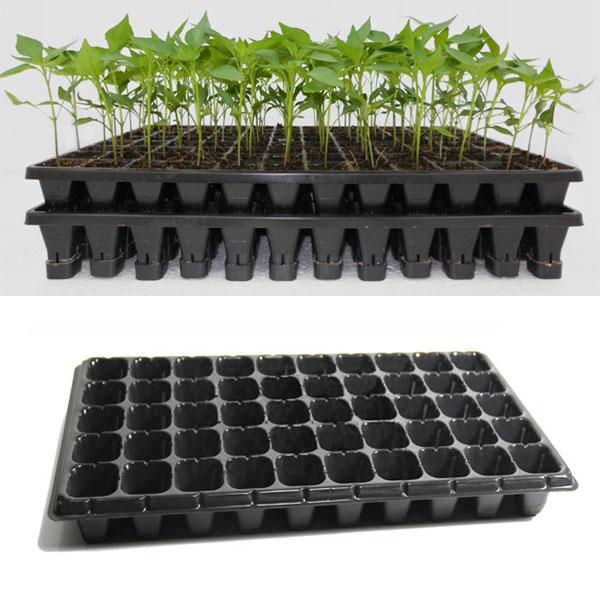 21 32 50 Holes Vegetable Flower Seeds Growing Tray Garden Plant Nursery Seedling Plate Alex Nld