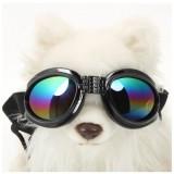 Dog Sunglasses & Goggles