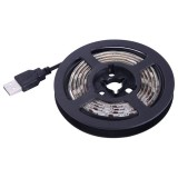 14.4W 60 LEDs SMD 5050 USB TV White Board Epoxy Rope Light with 50cm USB Interface Cable, 1m (White Light)