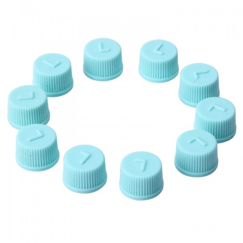 10 PCS Car Auto Universal Dustproof Air Condition Low Pressure Protective Valve Cap Cover