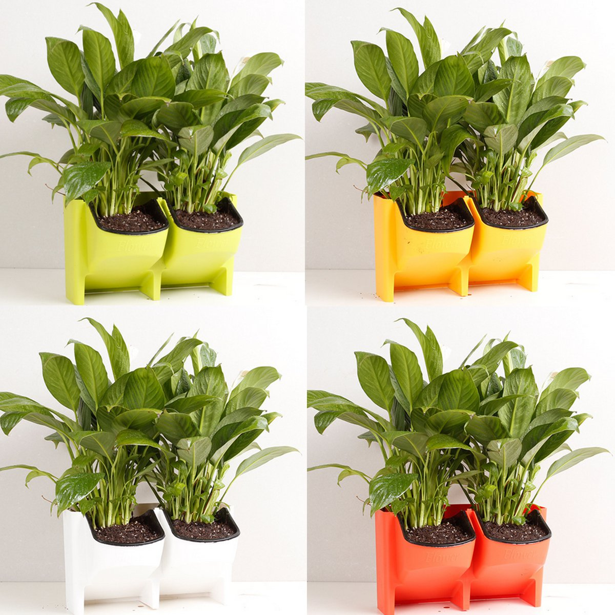 2 Pocket Vertical Wall Planter Self Watering Hanging