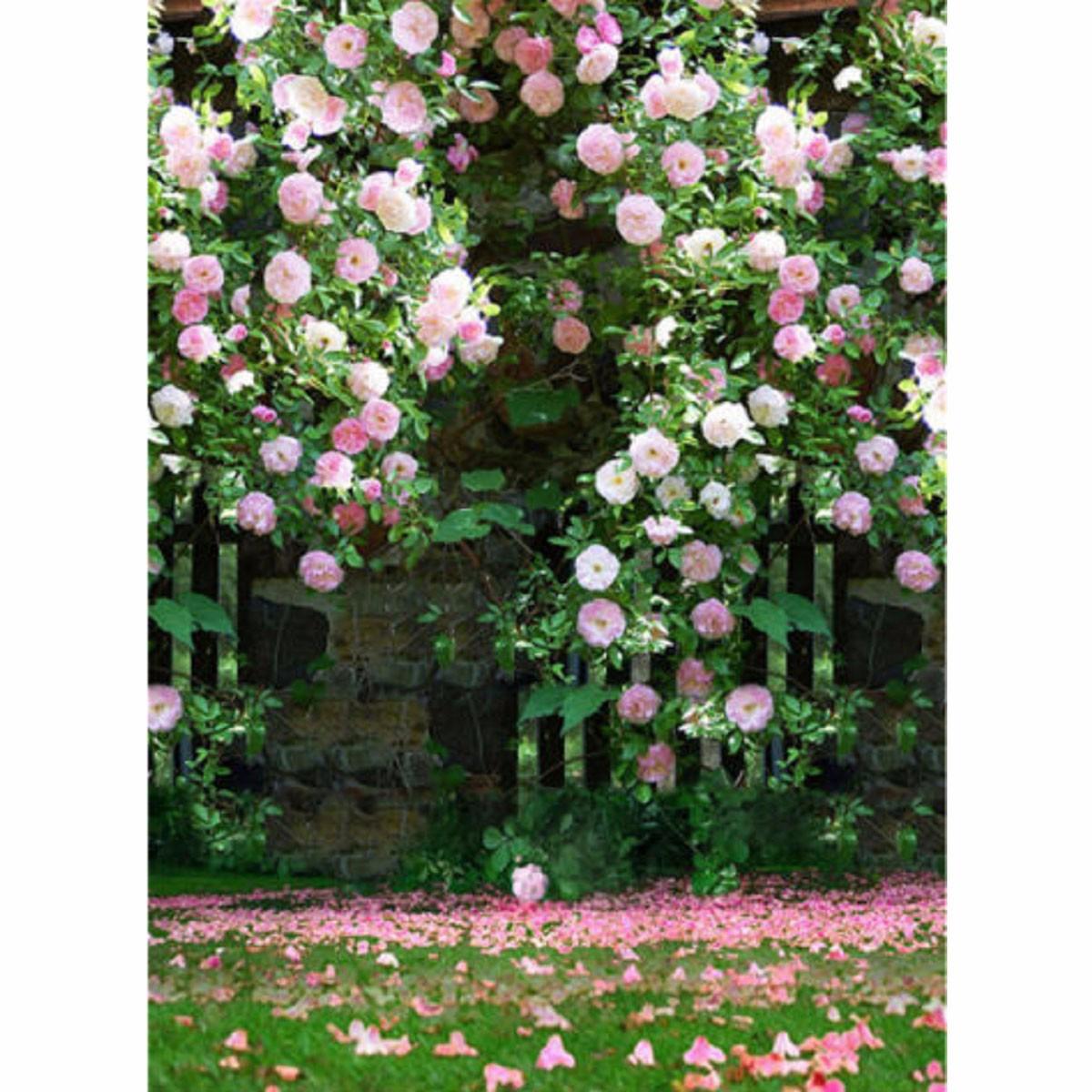 Photography Vinyl Background Romantic Wedding Rendezvous Garden Roses Cluster