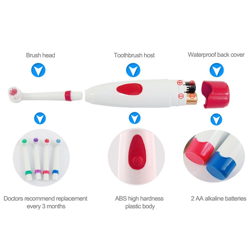2W Creative Household Waterproof Rotary Electric Toothbrush Set with 4 Replacement Brush Heads & Base, 8500 Revolutions Per Minute (Red)