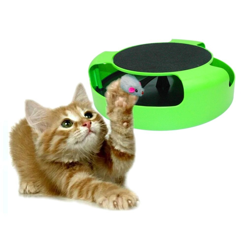 Interactive Cat Toys Canada