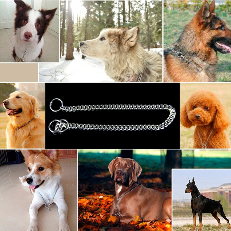 35cm Pet P Chain Pet Collars Pet Neck Strap Dog Neckband Snake Chain Dog Chain Solid Metal Chain Dog Collar