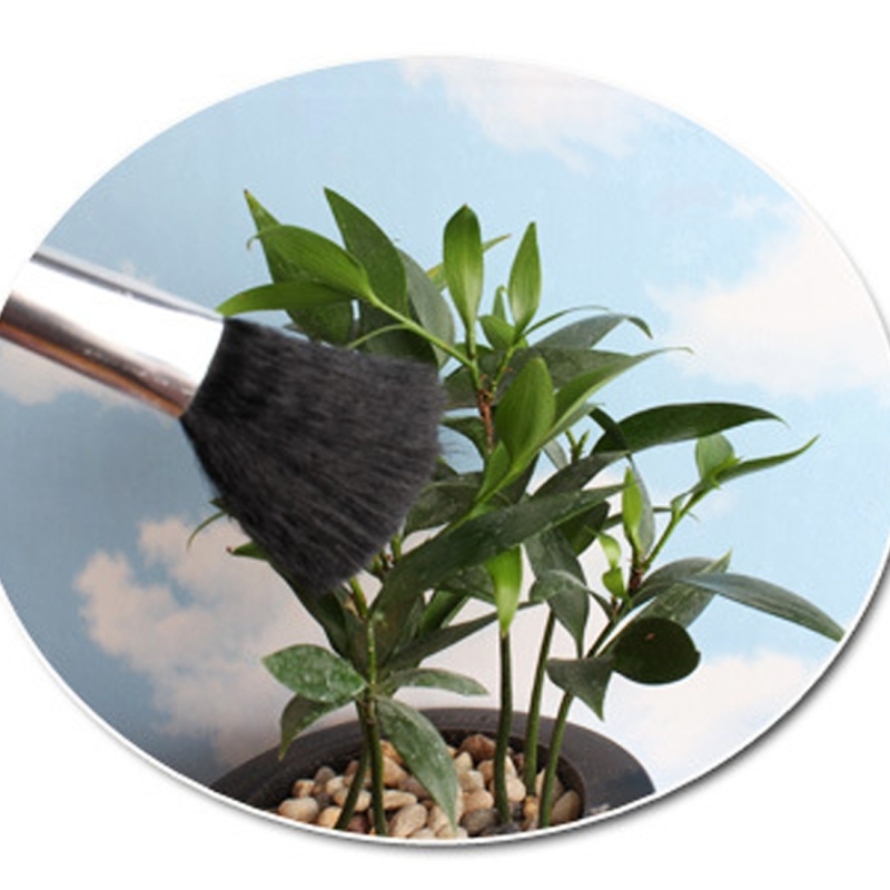 5 PCS Horticultural Plant Brushes Debris Brush Dust Brush