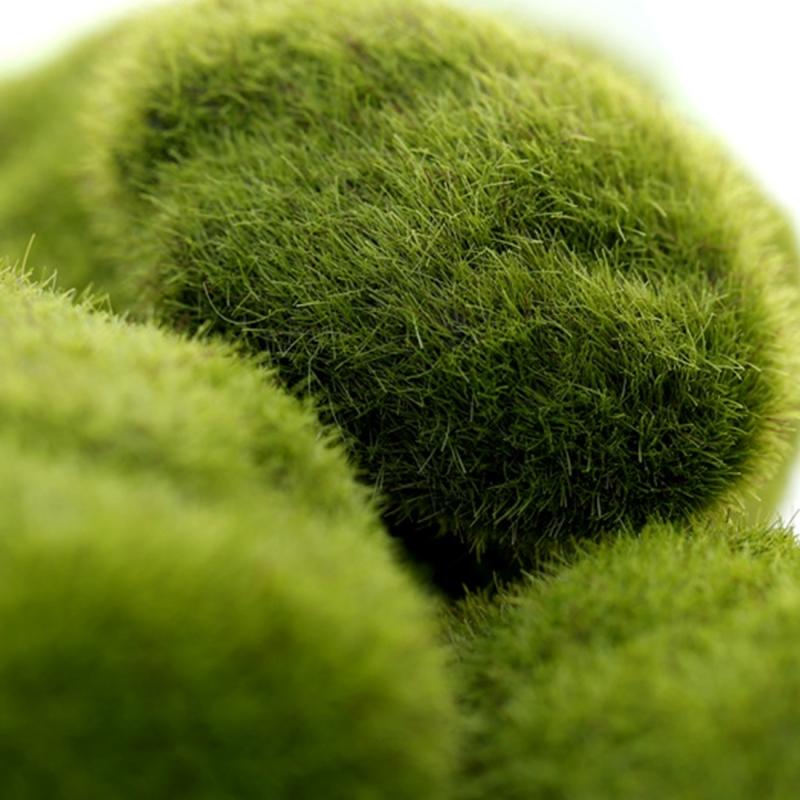 Simulation of False Moss Simulation of Bryophyte Stone Moss Flocking False Lawn Micro Landscape Decoration Accessories, 10cm