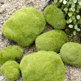 Simulation of False Moss Simulation of Bryophyte Stone Moss Flocking False Lawn Micro Landscape Decoration Accessories, 8cm