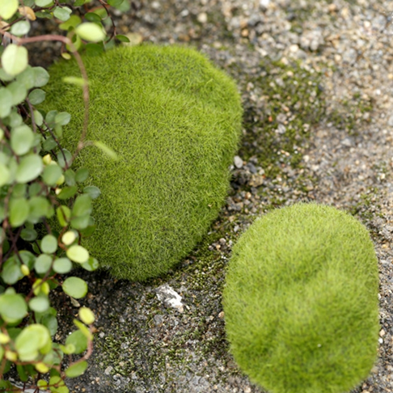 Simulation of False Moss Simulation of Bryophyte Stone Moss Flocking False Lawn Micro Landscape Decoration Accessories, 6cm