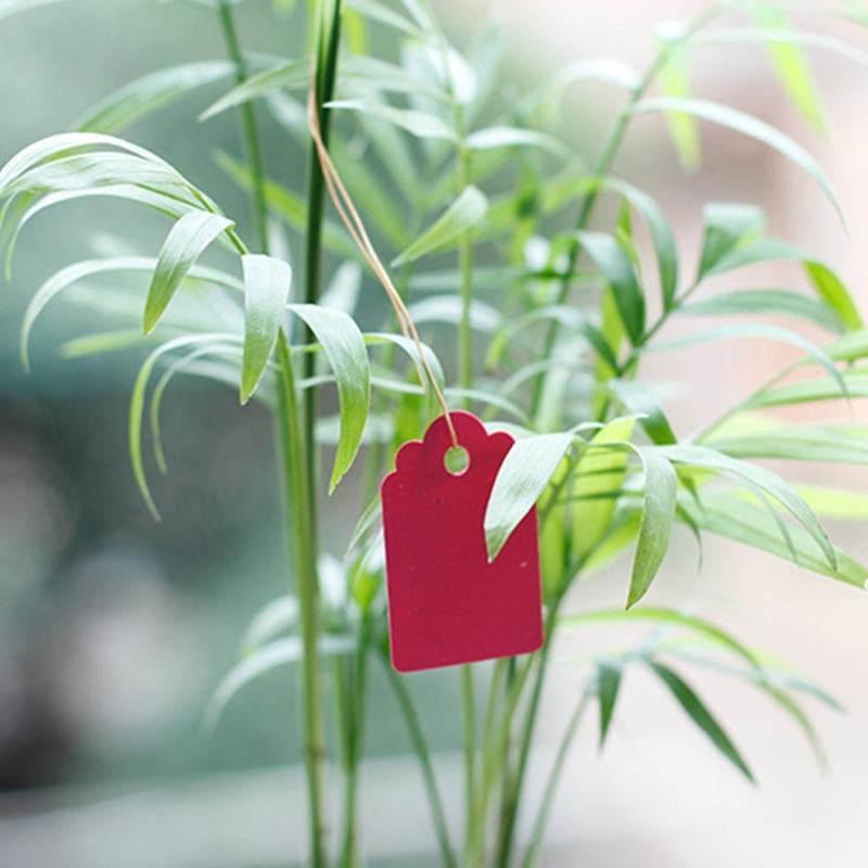 100 PCS Waterproof Durable and Reusable Plastic Nursery Garden Plant Label Flower Tag Mark Plant Tag Labels (Random Color)