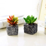 2 PCS Creative Simulation Multi – meat Potted Small Potted Plant Simulation Fleshy Plant False Meat Decorative Ornaments Micro – landscape (Random Pattern)