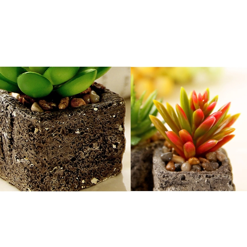 2 PCS Creative Simulation Multi - meat Potted Small Potted Plant Simulation Fleshy Plant False Meat Decorative Ornaments Micro - landscape (Random Pattern)