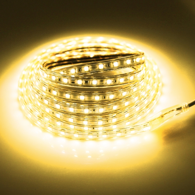 180 LEDs SMD 5050 Casing IP65 Waterproof LED Light Strip with Power Plug, 60 LED / m, Length: 3m, AC 220V (Warm White)