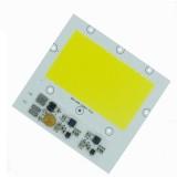 50W 100W DIY COB LED Light Chip Bulb Bead For Flood Spotlightt AC170-300V