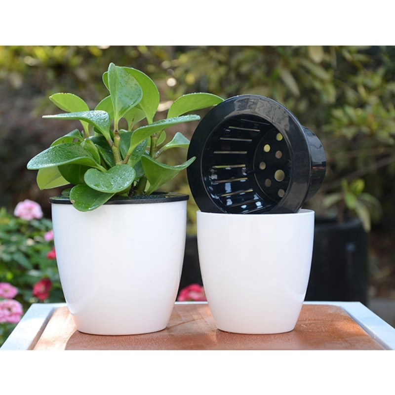 Lazy flower pots automatic water absorbing hydroponic potted plants hc2350a6g workwithnaturefo