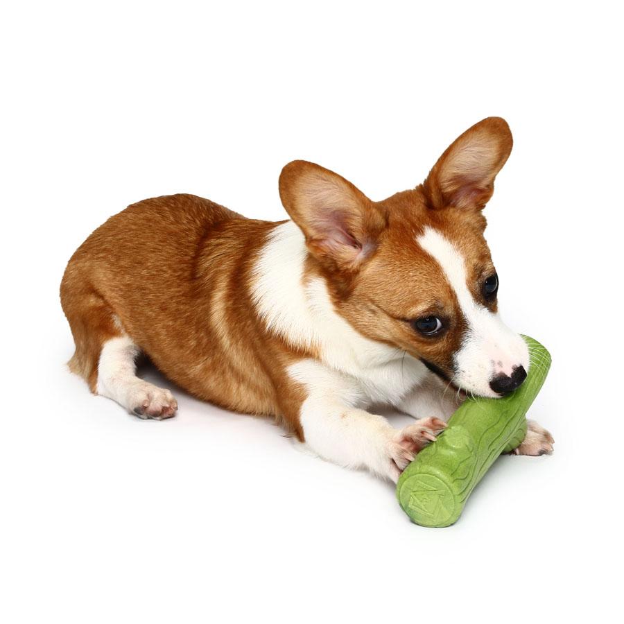 Dog Intelligence Games Toys