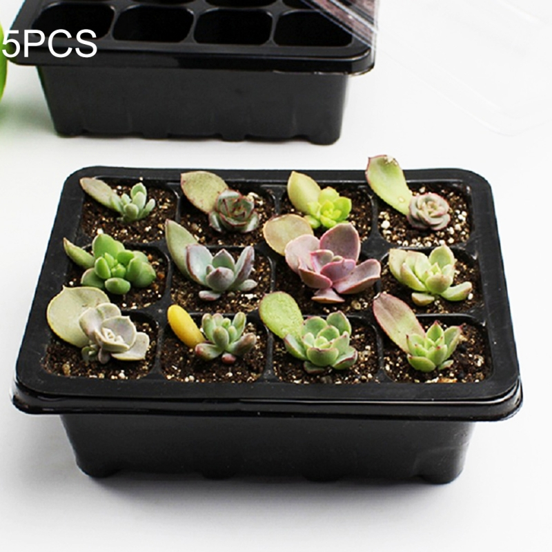 5 PCS Seedling Tray Sprout Plate 12 Holes Nursery Pots Tray Lids Box For Gardening Bonsai Mini Greenhouse Nursery Plate (Black)