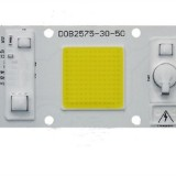 30W 50W Warm White/White LED COB Chip Light for Downlight Panel Flood Light Source AC180-260V