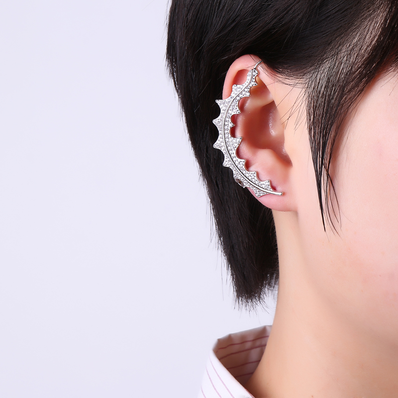 More Detailed Photos Luxury 925 Sterling Silver Earrings Leaf Full Zirconia Ear
