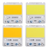 50W LED COB Chip Integrated Smart IC Driver for Flood Light AC110V / AC220V