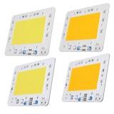 100W LED COB Chip Integrated Smart IC Driver for Flood Light AC110V / AC220V