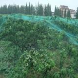 Gardening Anti Bird Net Protect Tree Net Fruit Crop Plants Pond Netting Mesh 2m x 10m